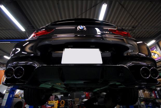 F13 640 N55 3D Design Carbon (1).JPG