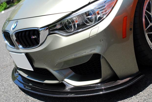 cpm M4 Lip Under Carbon インフュージョン (5).JPG