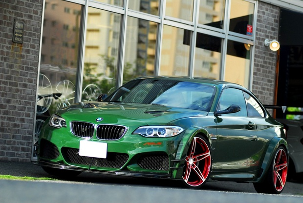 AC SCHNITZER ACL2 S55 M235 (4).JPG